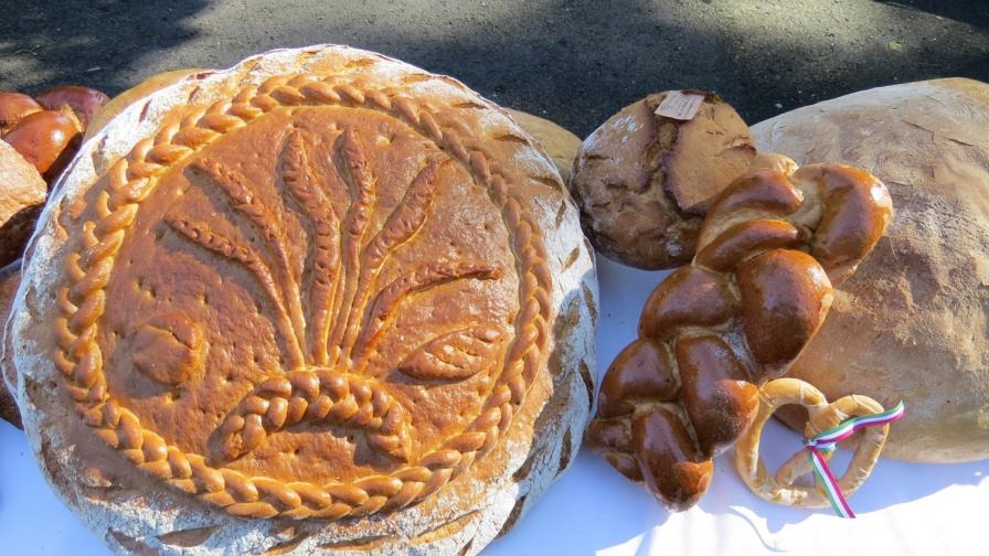 Alföldi kenyér, szőlő és bor ünnep 2021
